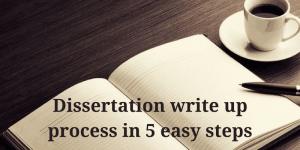 Dissertation write up help
