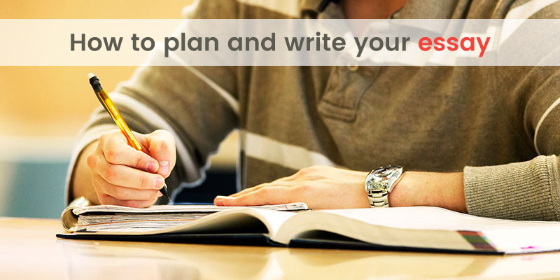 Plan your essay