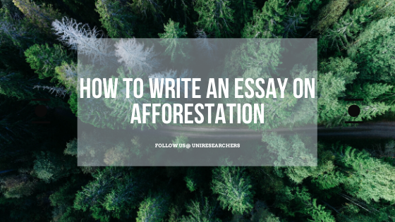 How to write an essay on afforestation