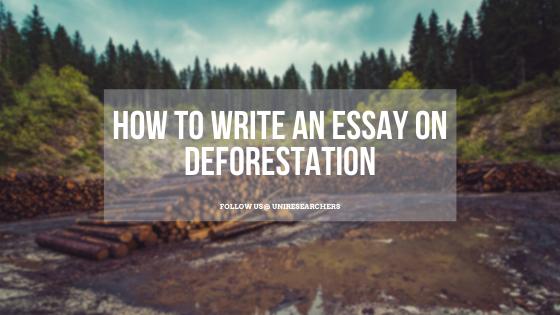 An essay on deforestation